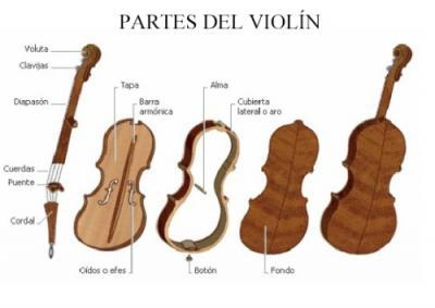 partes del violín